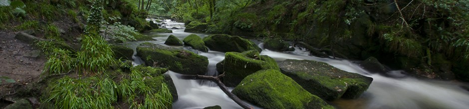 A photo of a stream with boulders